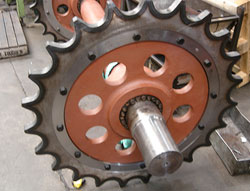 Conveyor Sprocket and Chain